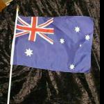 10x Flagge Australien Papierfahne 12x24cm