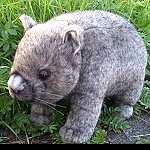 Wombat Luzi, die echte - wie original 25cm