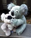 16cm Koala + Bruder oder Baby