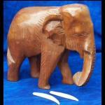 Elefant aus Afrika Holz handgeschnitz 15cm