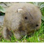 1 Wombat Paul,  ganze 17 cm !!!