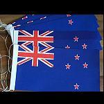 20 Fahnen Band Girlande 5 m Neuseeland