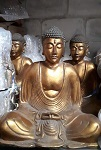 20x golden Buddha 25cm Poly.
