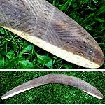 Jagdbumerang  Antik Carving 52cm