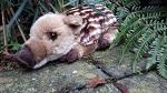 Wildsau little Borsti Wildschwein 28cm