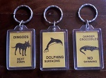 3er Set Schlüsselanhänger Dingo Dolphin Cr
