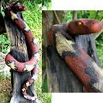 Schlange Treibholz riesig 110cm wie echt