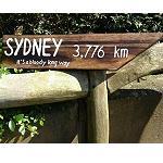 Holzschild Städte Sydney Perth Darwin 40cm