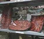 Holz Schale Schalen verschd Größen