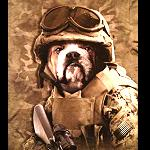 T Shirt Soldat Sam Garten-Feindbekämpfung