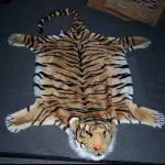 Tiger Fell  Plüsch  1,4 m  Wand  Teppich
