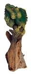 Leguan auf Treibholz 45cm hoch/flach