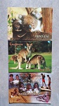 3x Postkarten Tiere Kinder Australiens