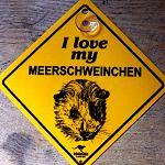 Schild  -  I love my MEERschweinchen -