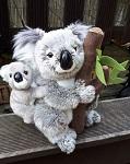 Koala Mama 25cm  sehr flauschig
