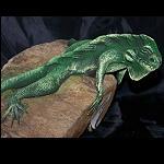 Echse Leguan auf Treibholz modelliert 13cm