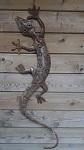 Gecko Echse 100 cm Edelrost
