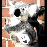 Koala  17 cm hoch