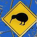 Pin mit Kiwi Schild aus Neuseeland