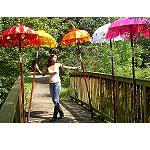 Bali Schirm Farben rot pink grün blau80cm