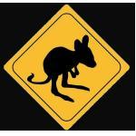 Aufkleber Känguru Baby - Joey 8cm