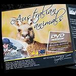 cd DVD australian   animales  slide show