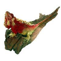 Leguan bemalt auf Treibholz 33 cm